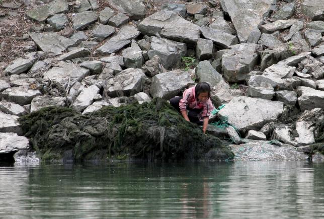 A girl works on the bank of the Yalu River, in Sakchu county, North Phyongan Province, North Korea, June 20, 2015. REUTERS/Jacky Chen/Files