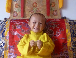 Ngawang Tenzin Choekyi Lodoe Rabsel. Photo: Phayul.com