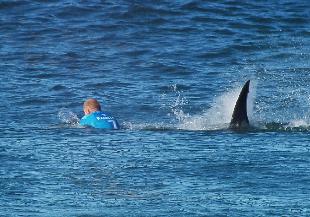 In this image made available by the World Surf League, Australian surfer Mick Flanning is pursued by a shark, in Jeffrey's Bay, South Africa,  Sunday, July 19, 2015. Knocked off his board by an attacking shark, a surfer punched the creature during the televised finals of a world surfing competition in South Africa before escaping. Fanning was attacked by a shark on Sunday during the JBay Open but escaped without injuries. Photo: World Surf League/AP