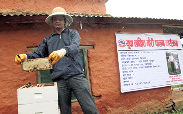 A farmer collecting honey at Suklagandaki Municipality, in Tanahun, on Monday. Photo: THT