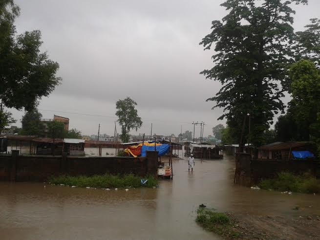 A human settlement submerged by flood water in Bhansar Roda-2 of Dhangadhi Municipality in Dhangadhi on Tuesday, July 07, 2015. Photo: Prakash Singh