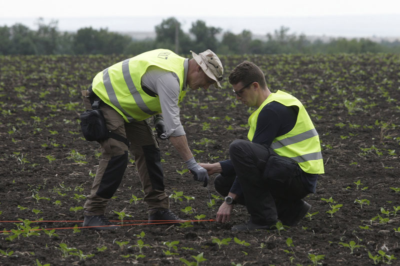 Investigators work at the site of the Malaysia Airlines Boeing 777 plane crash (flight MH17) near the village of in Snizhne (Snezhnoye) in Donetsk region, Ukraine, June 19, 2015. Photo: Reuters