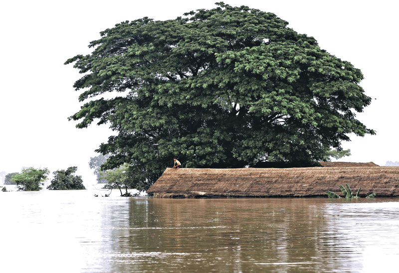 A man sitting on the roof of his home in a flooded village at Kawlin township, Sagaing division, nMyanmar on Wednesday. Heavy rains caused flooding over 20,000 acres of rice field and in about a hundred villages, killing at least eight people, according to local media. Photo: Reuters