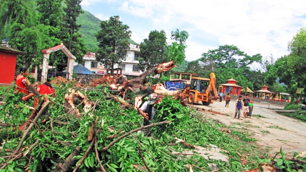 Trees being removed as part of a road expansion drive in Tanahun on Saturday. In Damauli Bazaar area too, cart vendors have been removed to ease traffic. THT