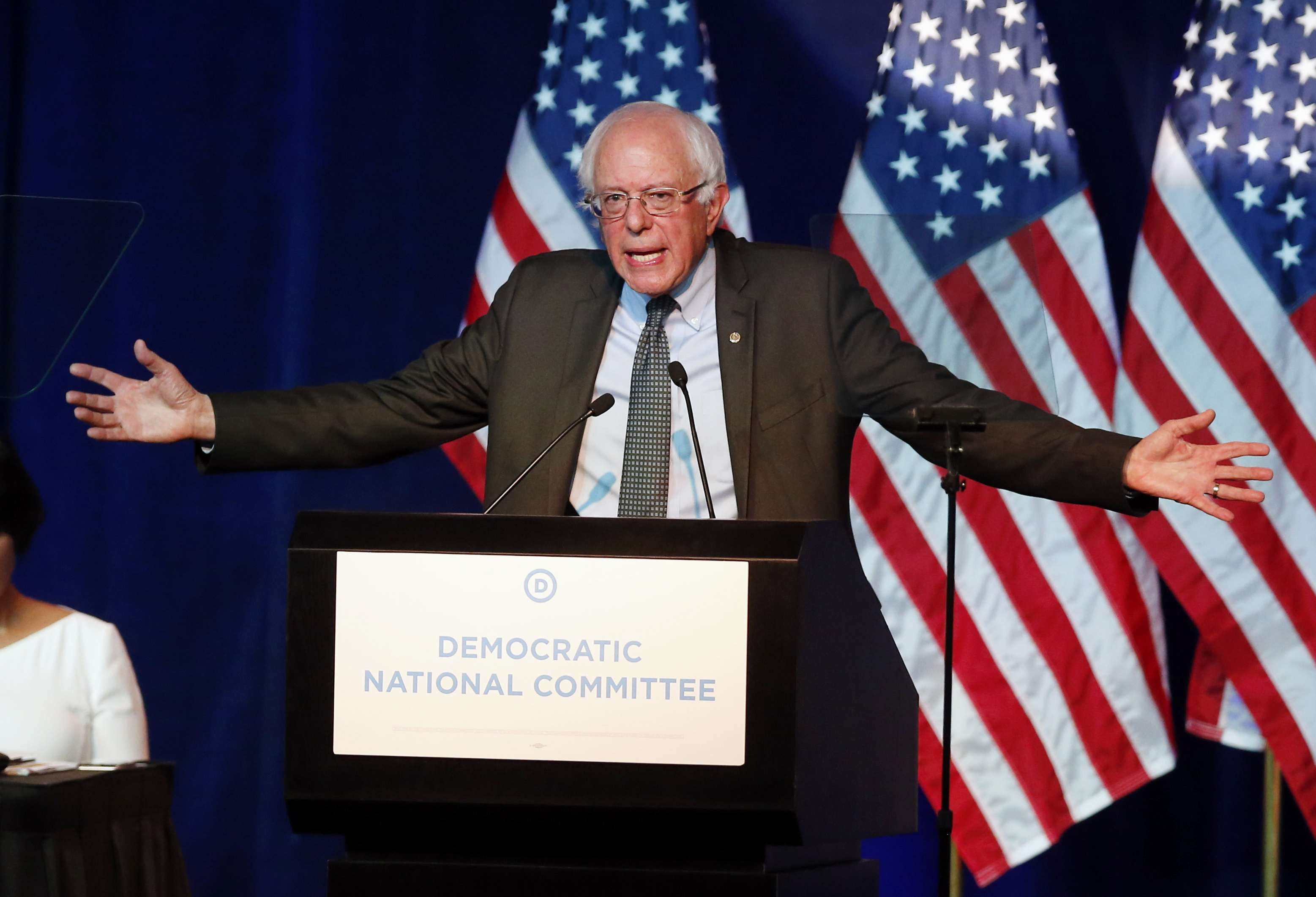 Democratic presidential candidate, Sen. Bernie Sanders, I-Vt,  addresses the summer meeting of the Democratic National Committee, Friday, August 28, 2015, in Minneapolis. Photo: AP