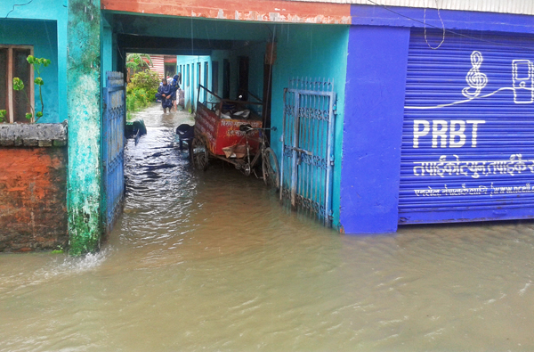 Incessant rainfall since Saturday has caused water-logging in a number of areas in Dhangadi.   Photo:THT