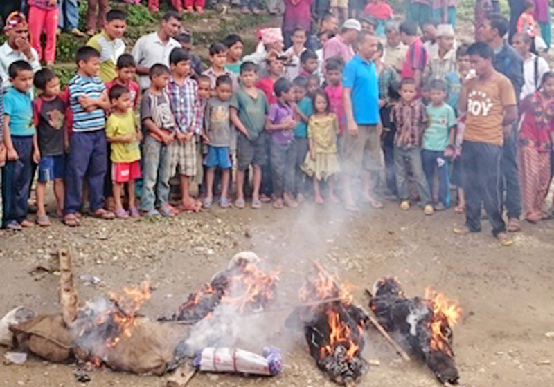 Protesters burning the effigies of top leaders, in Khalanga, Jajarkot, on Sunday. Photo: THT