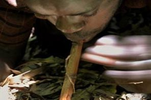 Kneeling in the dank shade of a small coppice near Maseno in western Kenya, Alexander Okonda blows through a reed into a pot embedded in a tree hollow and containing a secret mixture of sacred water and herbs.
