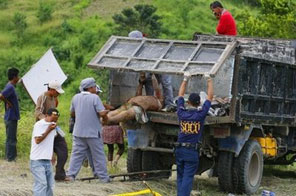 Workers load into a truck dead bodies, victims of massacre after gunmen shot at least 46 people in Ampatuan town, Maguindanao province, on November 24. Philippine police have named a political ally of President Gloria Arroyo as the prime suspect in the election-linked massacre. Source: AFP