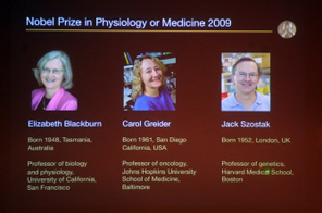 A picture taken from a screen as the Nobel Assembly at Karolinska Institute announces Elisabeth H. Blackburn, Carol W. Greider and Jack W. Szostak as the winners of the 2009 Nobel Prize in Medecine on October 5, 2009 in Stockholm for discovering an enzyme which helps chromosomes in cells stay eternally young, the Nobel jury said. They were honoured for the discovery of