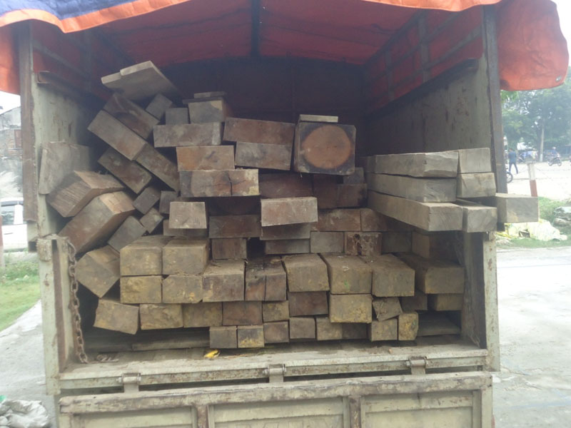 83.8 cubic feet of sal timbers worth Rs 350,000 confiscated from Pourai in Rautahat on Friday, September 25, 2015. Photo: Prabhat Kumar Jha