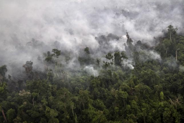 A forest fire is seen from a helicopter operated by the National Agency for Disaster Management (BNPB) over Langgam District, Riau province on the island of Sumatra September 23, 2015 in this photo taken by Antara Foto.  REUTERS/Regina Safri/Antara Foto