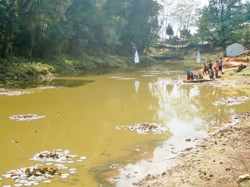 Jorpokhari on the verge of extinction due to encroachment. Photo: Laxmi Gautam