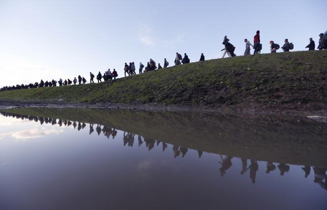 Migrants make their way on foot on the outskirts of Brezice, Slovenia, October 20, 2015. REUTERS/Srdjan Zivulovic