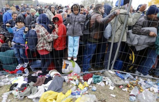 Children climb on a fence as migrants queue to cross the border into Spielfeld in Austria from the village of Sentilj, Slovenia, October 28, 2015. REUTERS/Srdjan Zivulovic