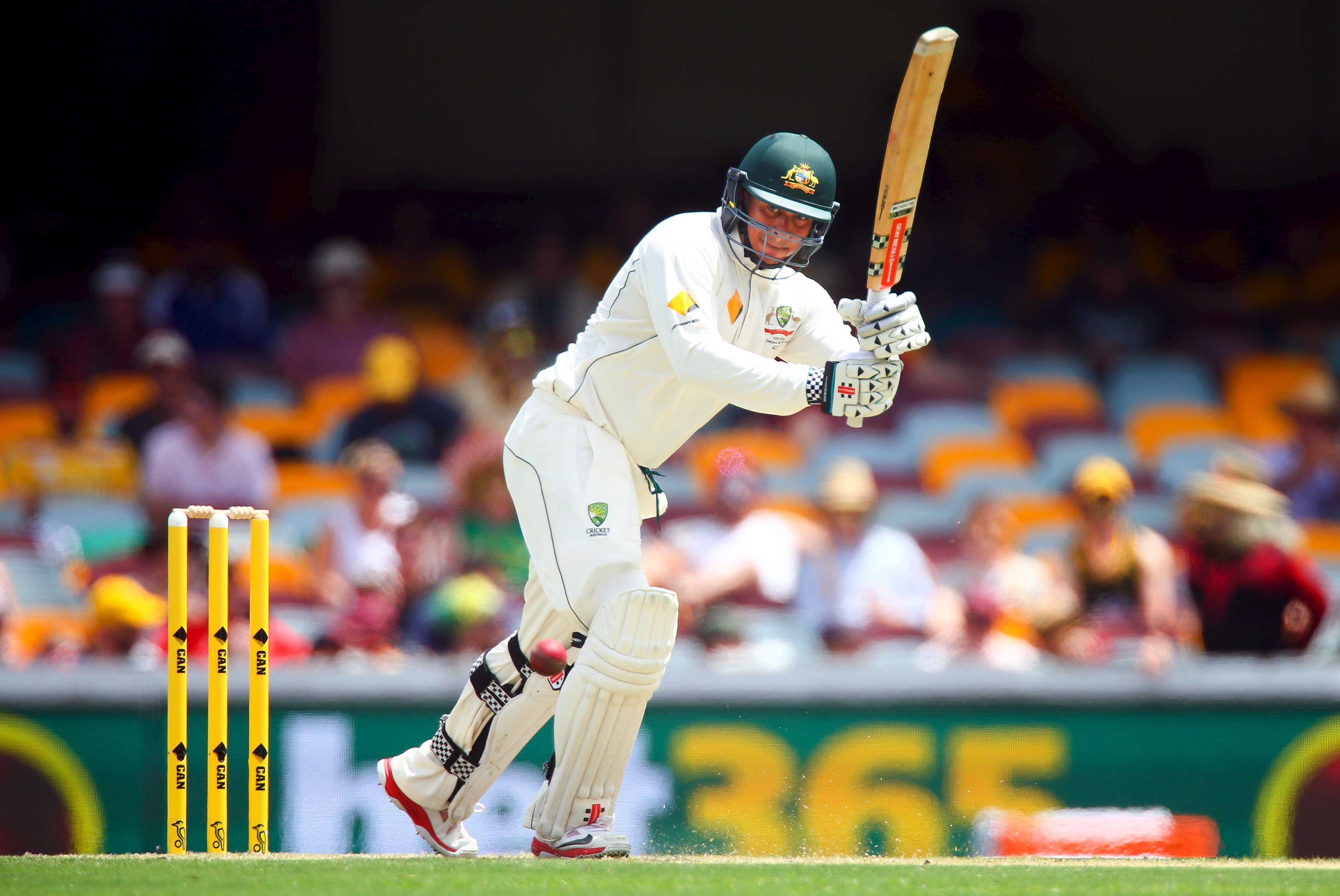 Australian batsman Usman Khawaja drives a wide delivery during the first cricket test match between Australia and New Zealand in Brisbane November 6, 2015. Photo: Reuters