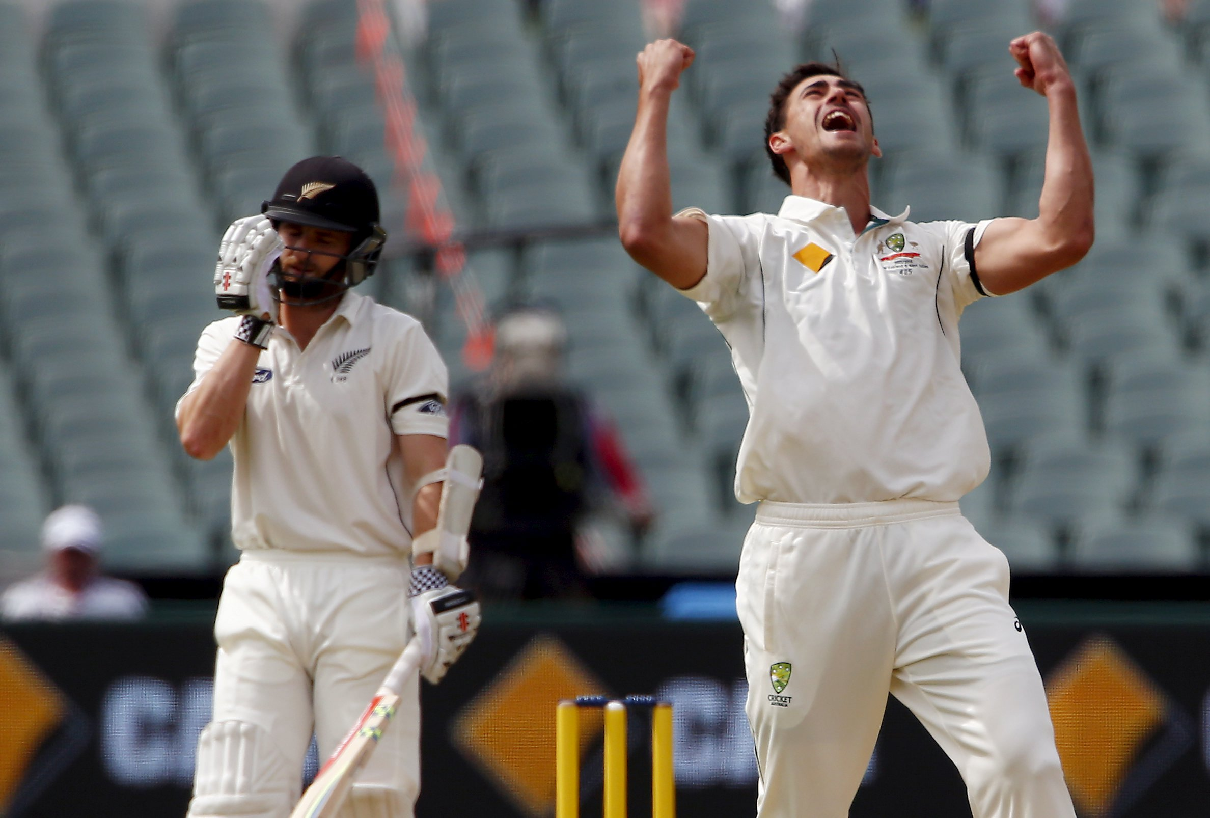 Australia's Mitchell Starc (right) celebrates dismissing New Zealand's Kane Williamson LBW for 22 runs during the first day of the third cricket test match at the Adelaide Oval, in South Australia, November 27, 2015. Photo: Reuters