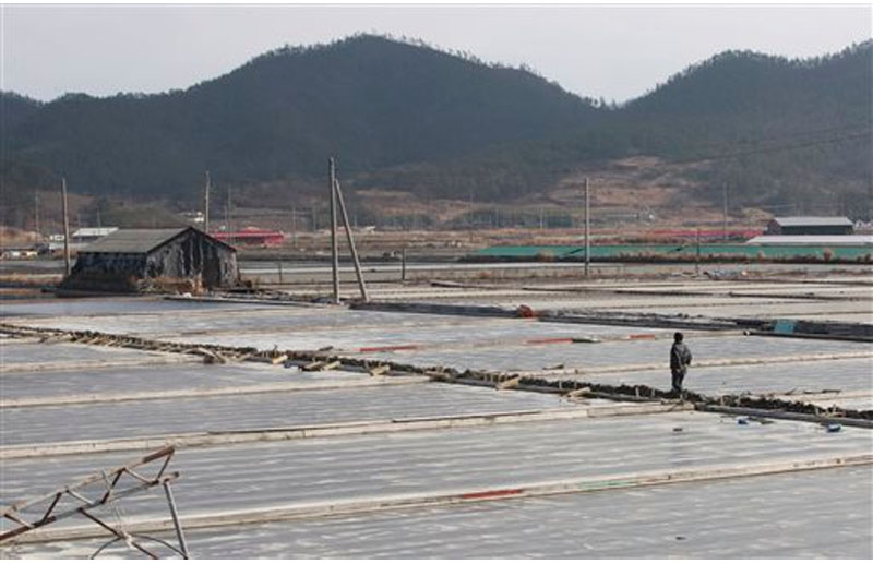 On February 19, 2014, a salt farm owner walks around his salt farm on Sinui Island, South Korea. Eight men who had been held as slaves at South Korean salt farms for several years have sued the government for alleged negligence and police inaction they say largely caused and prolonged their ordeal. Photo: AP