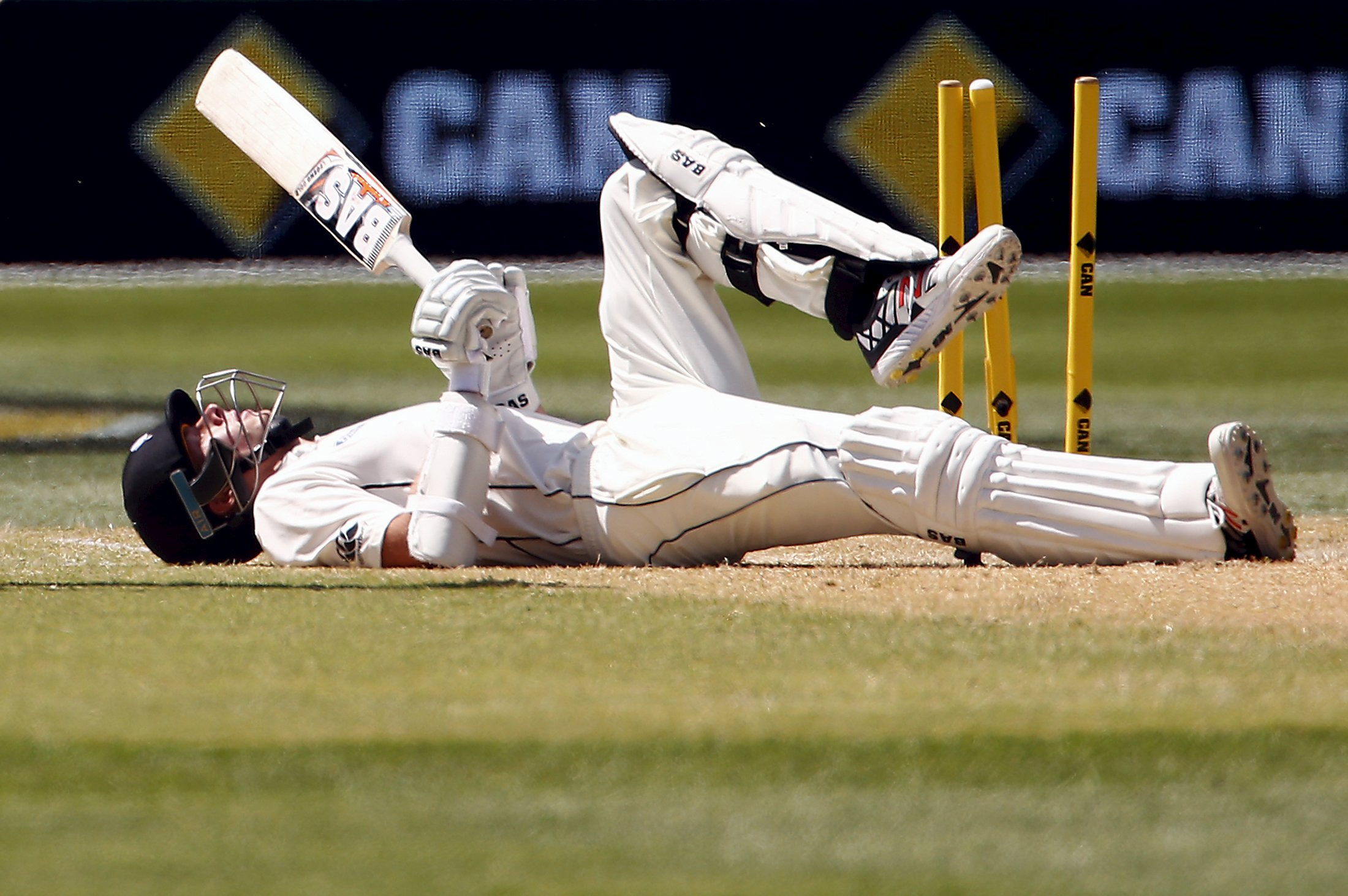 New Zealand's Mitchell Santner lies on the pitch after being stumped by Australia's wicketkeeper Peter Nevill for 45 runs during the third day of the third cricket test match at the Adelaide Oval, in South Australia, November 29, 2015. Photo: Reuters