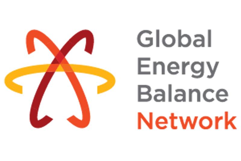 Courtesy: Global Energy Balance Network