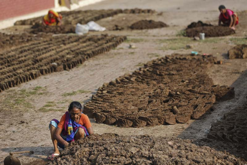 Indian village women make cow dung cakes in Allahabad, India on October 2, 2015. Photo: AP/ File