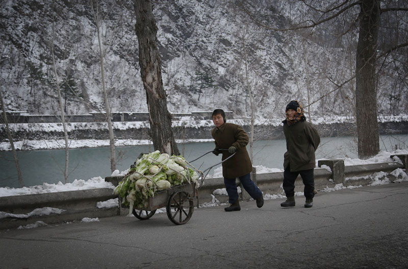 In this Thursday, December 3, 2015, photo, a boy pushes a cart of cabbage along a main road in Hyangsan county, North Pyongan, North Korea. Photo: AP