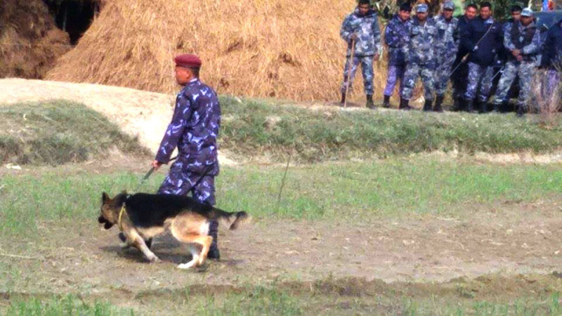 Police with sniffer dog to the incident site to investigate into the murder of a woman and her daughter, on Saturday, December 19, 2015. Photo: THT