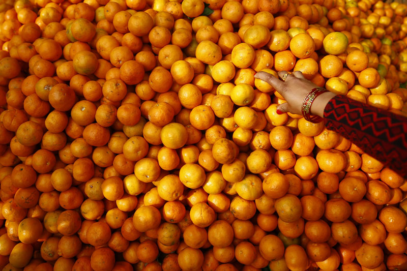 A hand of woman is seen picking oranges at a fruits and vegetables market in Kalimati, Kathmandu on Sunday, December 20, 2015. The prices of oranges have increased recently due to limited stock as the ongoing tensions in the Tarai region obstructed supplies. Photo: Skanda Gautam