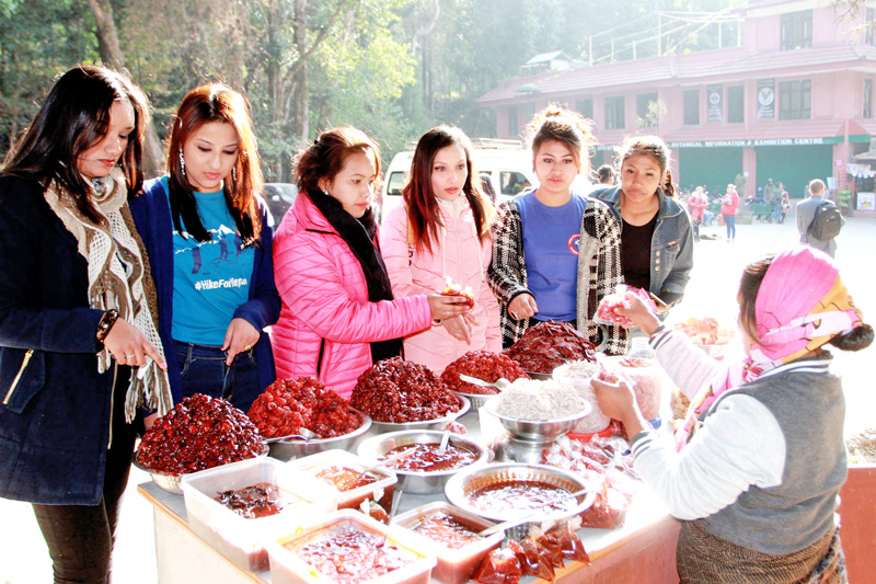 Young girls looks on at a Pau (local spiecy item) stalled infront of Godavari Park in Lalitpur district on Sunday, December 27, 2015. Photo: RSS