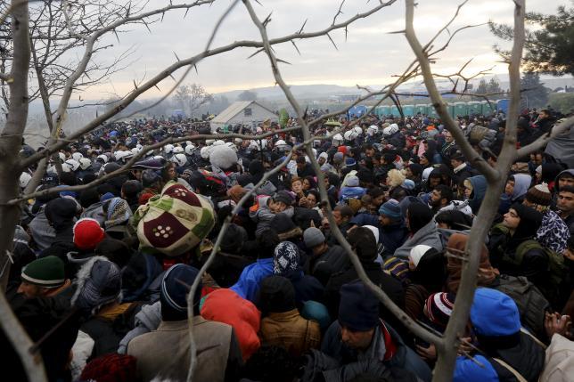 Refugees wait to cross the Greek-Macedonian border near the village of Idomeni, Greece December 4, 2015. Photo: REUTERS