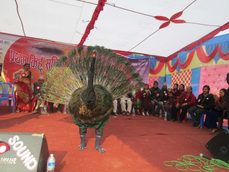 An artiste performs the peacock dance during the Kihun Satikot Festival in Tanahun district, on Saturday, January 16, 2016. Photo: Madan Wagle