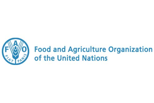 Photo: Food and Agriculture Organisation (FAO)
