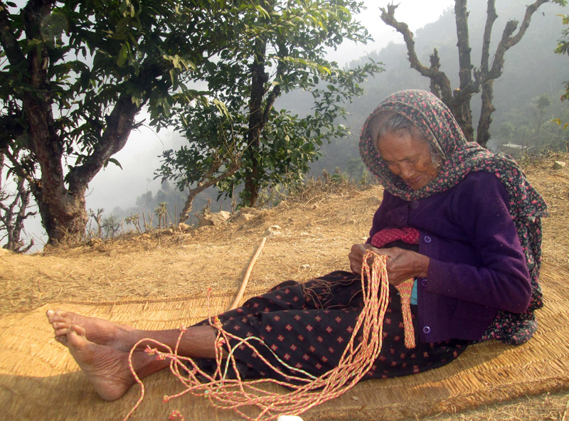 A senior citizen weaves a namlo, a band to carry wicker baskets, in her leisure in Gorkha, on Saturday, January 16, 2016. Photo: RSS