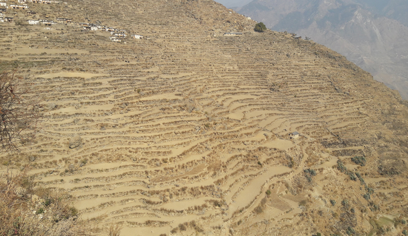 A barren landscape in Maila village of Humla district on Saturday, January 9, 2016. The villagers have been unable to cultivate any crop due to the drought for last one year. Photo: Prakash Singh
