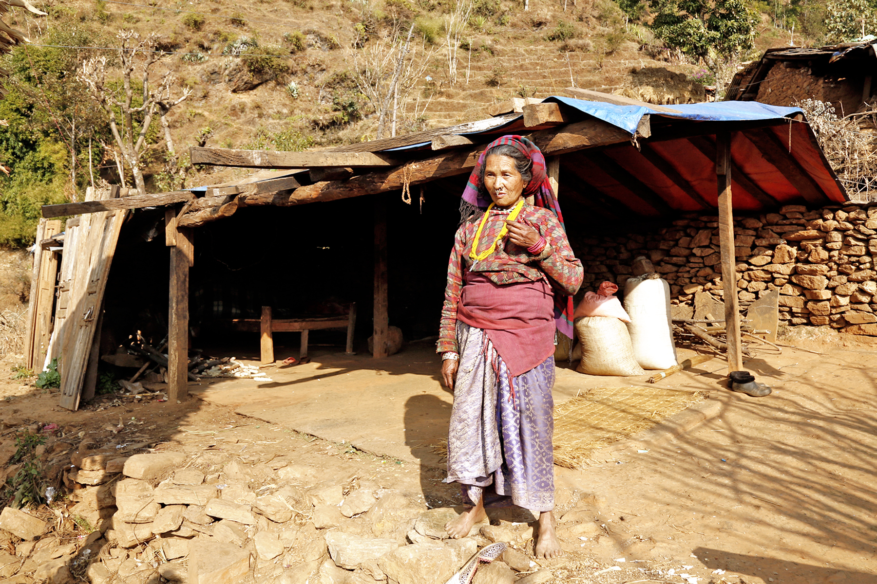 An elderly woman who lost other family members in the devastating April 25 Earthquake, living a miserable life in a temporary shelter at Batase in Sindhupalchok district on Wednesday, January 27, 2016. Photo: RSS