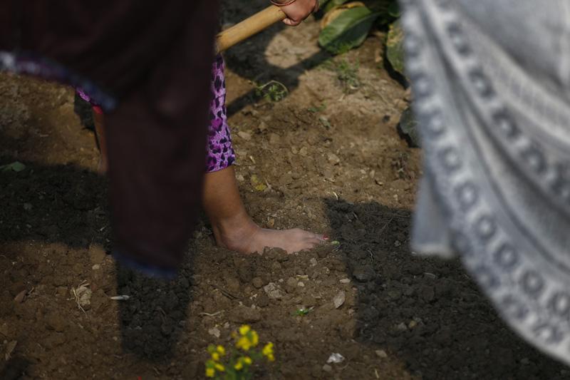 A farmer uses her hoe to dig a vegetable farm in Sipadol, Bhaktapur on Saturday, January 30, 2016. Photo:Skanda Gautam
