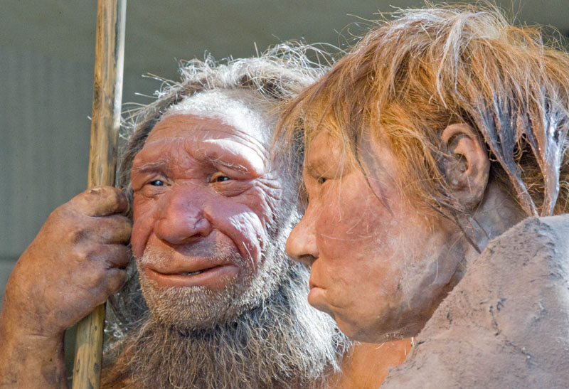 FILE - Reconstructions of a Neanderthal man (left) and woman at the Neanderthal museum in Mettmann, Germany, on Friday, March 20, 2009. Photo: AP