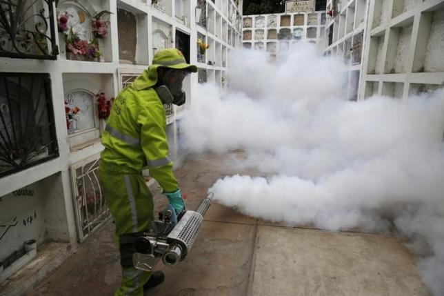 A health worker fumigates the cemetery of Surco to prevent Zika virus and other mosquito-borne diseases in Lima, Peru February 5, 2016. REUTERS/Mariana Bazo
