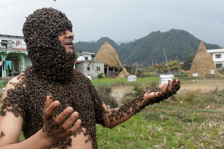 Surya Prasad Lamichhane keeps live bees all over his body in Pokhara on Wednesday, February 03, 2016. Photo: Bharat Koirala