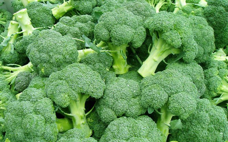 Photo: crackon.org/ nutrawiki.org/ healthyfoodhouse.com