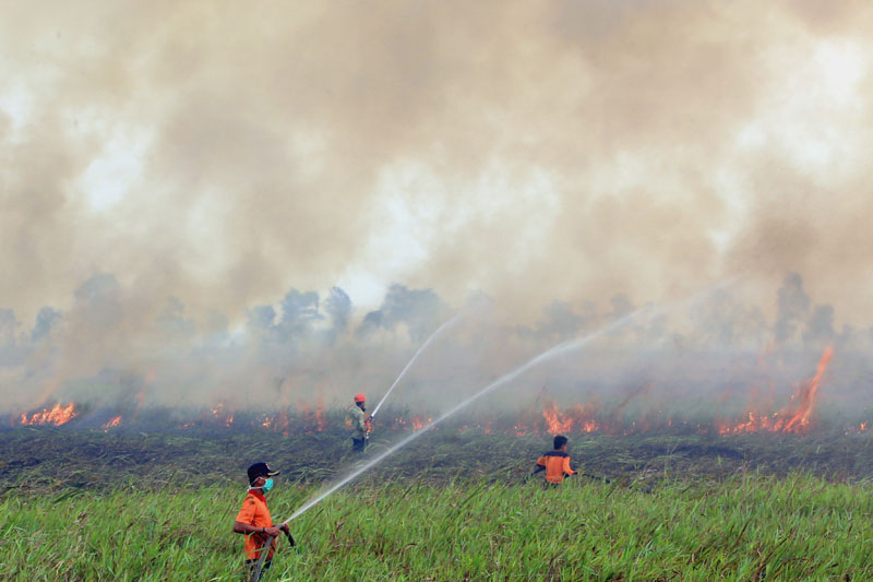FILE - Firemen spray water to contain burning wildfire in Ogan Ilir, South Sumatra, Indonesia, on Saturday, September 5, 2015. Photo: AP