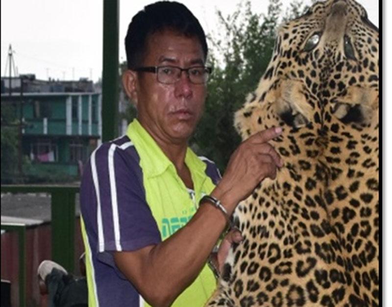 Bhakta-Bahadur-Gharti-Magar along with the seized leopard skin. Photo: MPCD