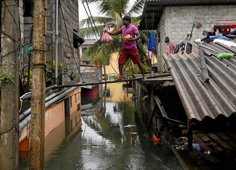 A man walks on a wooden plank to hand food over to his neighbours on a flooded road in Wellampitiya, Sri Lanka on May 21, 2016. Photo: Reuters