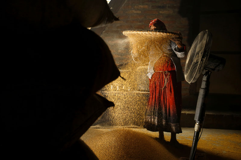 Ganga Dangol, a 54-year-old woman, winnowing mustard seeds at Shikali Oil Mill in Khokana on the outskirts of Kathmandu Valley, on Wednesday, on May 11,2016. The price of seeds per kilogram has risen up from Rs. 70 to Rs. 90 after the Nepal-India border blockade that affected the nation a few months back. Photo: Skanda Gautam