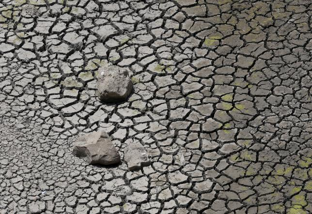 Cracked soil at seen in Osmanabad, India, April 17, 2016. REUTERS/Danish Siddiqui