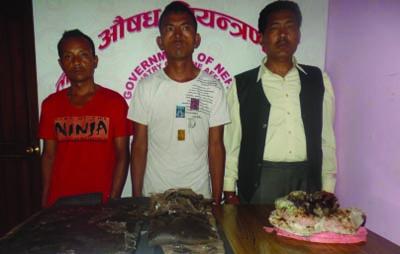 From left to right: Suspected drug smugglers Dhan Bahadur Tamang, Rahul Tamang and Indra Bahadur Karki were paraded by Nepal Police. Photo: Nepal Police's Narcotics Control Bureau