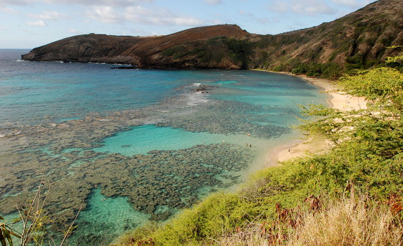 Oahuu2019s Hanauma Bay near Honolulu, on Wednesday, May 6, 2016. Much of the inner reef at Hanauma Bay is dead after decades of tourist interaction, but the outter reef is still relatively healthy. Photo: AP