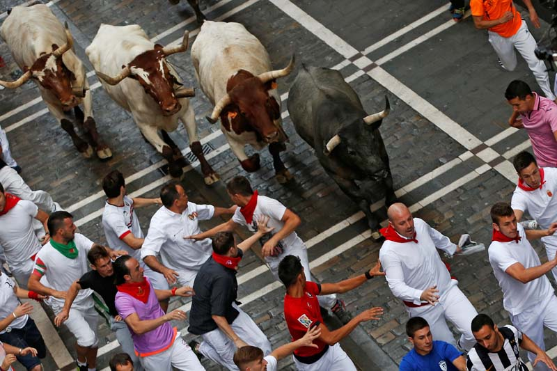 Runners lead a Jose Escolar bull and steers during the third running of the bulls at the San Fermin festival in Pamplona, northern Spain, on July 9, 2016. Photo: Reuters