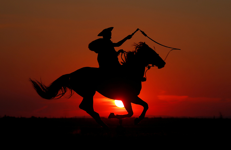 A traditional Hungarian horseman practices whiplashes as the sun sets in the Great Hungarian Plain in Hortobagy, Hungary July 7, 2016. Photo: Reuters