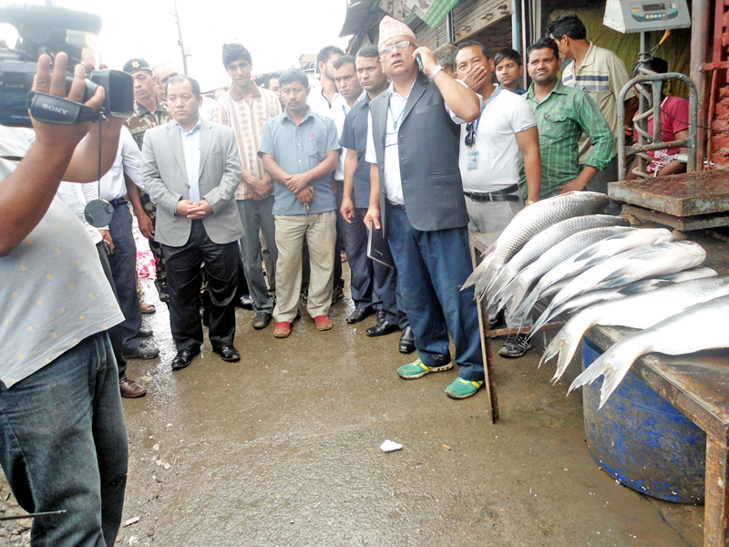 Minister for Supplies Ganesh Man Pun and other government officials monitoring fish shop at Kalimati vegetable and fruit market in Kathmandu on Tuesday, July 5, 2016. Photo: RSS